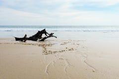 Een mooi zandig strand met bewolkte hemelachtergrond Stock Foto
