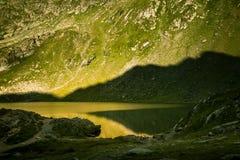Een mooi, zonnig bergmeer in de Karpaten Royalty-vrije Stock Foto's