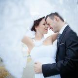 Een mooie bruid en een bruidegom Stock Foto