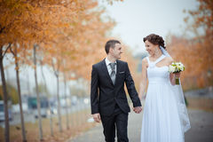 Een mooie bruid en een bruidegom Royalty-vrije Stock Foto's