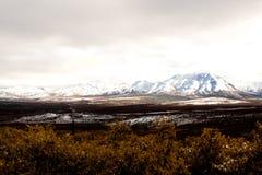 Een Mooie Bruine Toendravallei met Snowcapped Bergen Stock Afbeelding
