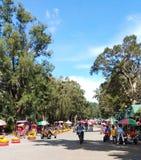 Een mooie dag in Burnham Park in Baguio-Stad Jonge geitjes die een fietsrit nemen royalty-vrije stock fotografie