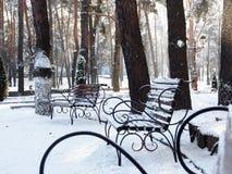 Een mooie de winter ijzige en zonnige dag Royalty-vrije Stock Fotografie