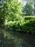 Een mooie de zomerdag bij de Spreewald-rivier in het midden van de aard Royalty-vrije Stock Foto
