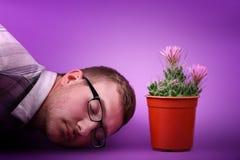 Een mooie groene cactus in een rode pot bevindt zich met het stromen toenam roze bloem zacht op een roze achtergrond Royalty-vrije Stock Fotografie