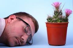 Een mooie groene cactus in een rode pot bevindt zich met het stromen toenam roze bloem zacht op een neonachtergrond Royalty-vrije Stock Fotografie