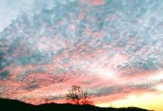 Een mooie hemel bij zonsondergang stock foto's