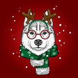 Een mooie hond in een hert past en sjaal aan antler Vector illustratie Rasecht puppy in kleren en toebehoren Schor of wolf vector illustratie
