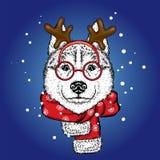 Een mooie hond in een hert past en sjaal aan antler Vector illustratie Rasecht puppy in kleren en toebehoren Schor of wolf stock illustratie