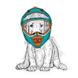 Een mooie hond in een motorfietshelm Rasecht puppy Vectorillustratie voor een prentbriefkaar of een affiche Royalty-vrije Stock Afbeelding