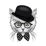 Een mooie kat met een hoed en een band Grappig katje Vector illustratie stock fotografie