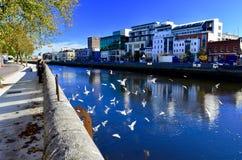 Een mooie mening van cork door rivier Lee Cork stad, Ierland royalty-vrije stock fotografie