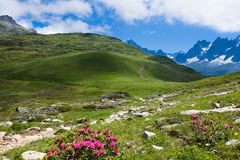Een mooie mening van de Franse alpen Stock Foto