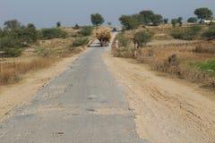 Een mooie mening van de weg in het land van Punjab royalty-vrije stock fotografie