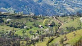 Een mooie mening van het Roemeense platteland op een warme dag van de lente royalty-vrije stock afbeelding