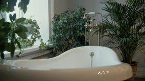 Een mooie moderne witte die badkuip door groene installaties wordt omringd stock footage