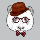 Een mooie panda met een hoed, glazen en een band Vector illustratie Draag royalty-vrije illustratie