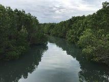 Een mooie rivier stock fotografie