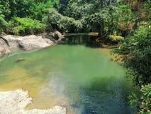 Een mooie rivier in dambulla, Sri Lanka stock foto's