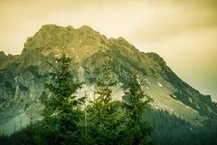 Een mooie Rozsutec-bergmening van Mala Fatra in Slowakije Royalty-vrije Stock Foto