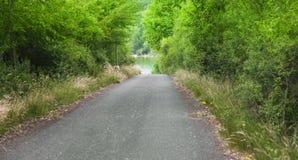 Een mooie scène van een weg aan een meer, groene weg stock afbeeldingen