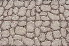Een mooie textuur van weg van grijze vlotte stenen met gele esdoornzaden en pijnboomnaalden in het park stock foto's