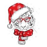 Een mooie tijger in een Nieuwjaar ` s GLB en sjaal Vectorillustratie voor een prentbriefkaar of een affiche De Kerstman _2 royalty-vrije illustratie