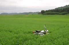 Een motorfiets die op het gras door het meer wordt geparkeerd Royalty-vrije Stock Foto's