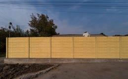 Een muur van geschilderde gele baksteen op een stadsstraat royalty-vrije stock afbeelding