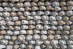 Een muur van overzeese rapanas Stock Afbeelding