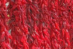 Een muur van Rood Chili Ristras Royalty-vrije Stock Afbeeldingen