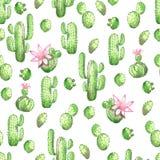 Een naadloos waterverfpatroon met groene cactus op een roze achtergrond stock illustratie