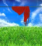 Een nat zwemmend kostuum droogt op een blauwe hemel als achtergrond Stock Foto
