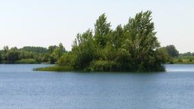 Een natuurlijk eiland op het meer stock videobeelden