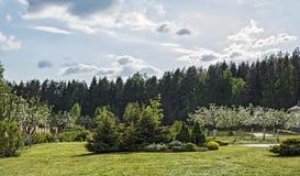 Een natuurlijk landschap met een appelboomgaard en een siervegetat Stock Fotografie
