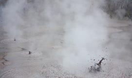 Een natuurlijke vulkanische modderpool bij het geothermische park wai-o-Tapu in Nieuw Zeeland royalty-vrije stock fotografie