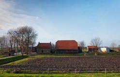 Een Nederlands landbouwbedrijf in noorden-Brabant Stock Fotografie