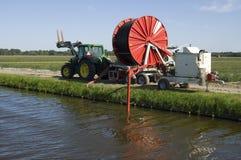 Een Nederlandse bollandbouwer heeft kunstmatige irrigatie nodig Stock Foto