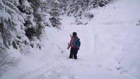 Een neemt de jonge vrouwengangen alleen door een sneeuw bos Jonge mooie toerist door de sneeuwafwijkingen heimelijk zij kijkt ron stock footage