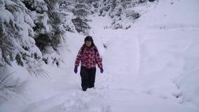 Een neemt de jonge vrouwengangen alleen door een sneeuw bos Jonge mooie toerist door de sneeuwafwijkingen heimelijk zij kijkt ron stock video