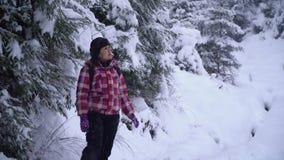 Een neemt de jonge vrouwengangen alleen door een sneeuw bos Jonge mooie toerist door de sneeuwafwijkingen heimelijk zij kijkt ron stock videobeelden