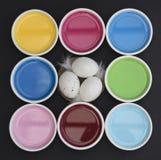 Een nest in de kleuren Stock Afbeeldingen