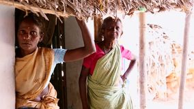 Een niet geïdentificeerde Indische oude vrouw in traditionele Indische saree bij camera stock videobeelden
