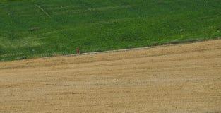 Een niet identificeerbare mens die een landweg lanceren stock foto