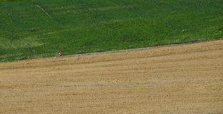 Een niet identificeerbare mens die omhoog een landweg cirkelen stock afbeelding