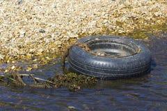 Een niet meer gebruikte band en een rand die een kleine stroom op het Solent-Manierstrand verontreinigen op Southampton Water dic Stock Foto