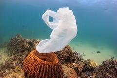 Een niet meer gebruikte plastic zak drijft voorbij een spons op een koraalrif af royalty-vrije stock afbeelding