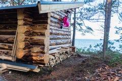 Een nieuw windscherm dichtbij een meer in Zweden Royalty-vrije Stock Fotografie