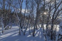 Een Noorse de winterscène royalty-vrije stock fotografie