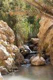 Een oase in de Atlasbergen royalty-vrije stock afbeelding